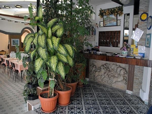 Hotel europa minori costiera amalfitana hotel alberghi in for Soggiorno costiera amalfitana